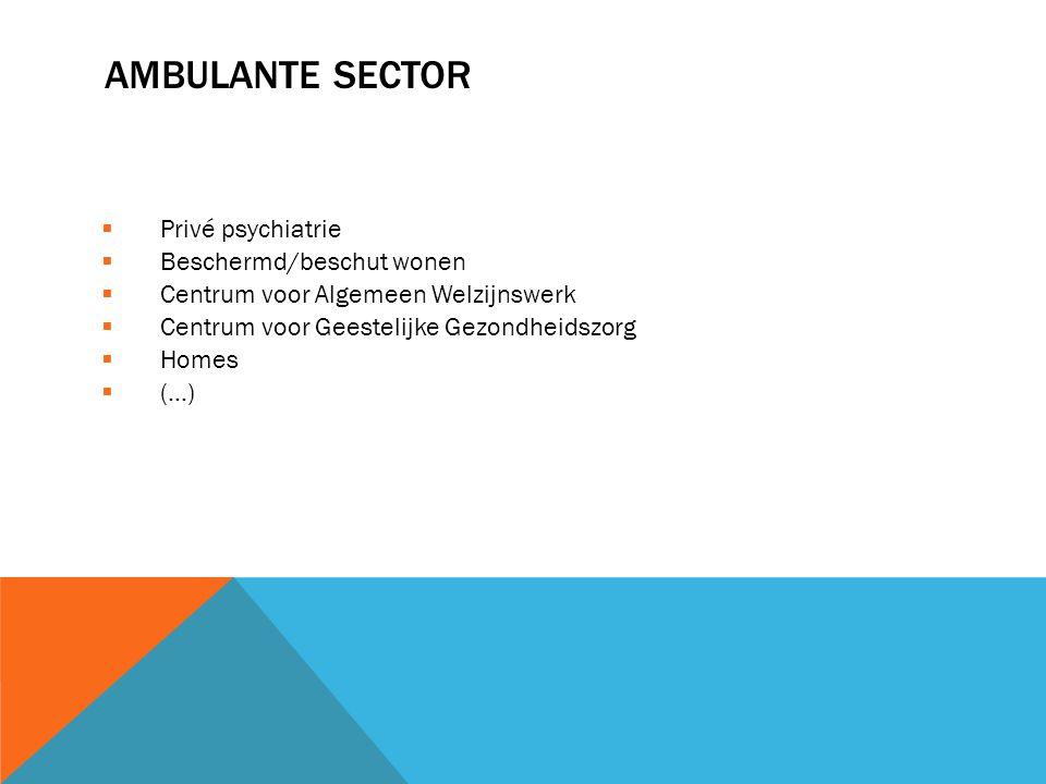 AMBULANTE SECTOR  Privé psychiatrie  Beschermd/beschut wonen  Centrum voor Algemeen Welzijnswerk  Centrum voor Geestelijke Gezondheidszorg  Homes
