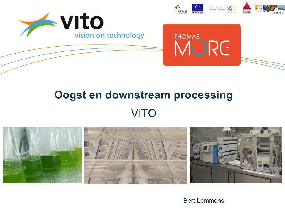Oogst en downstream processing VITO Bert Lemmens
