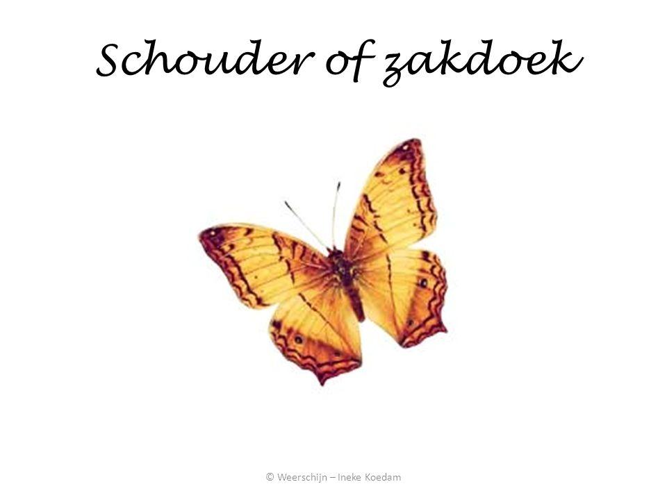 Schouder of zakdoek © Weerschijn – Ineke Koedam