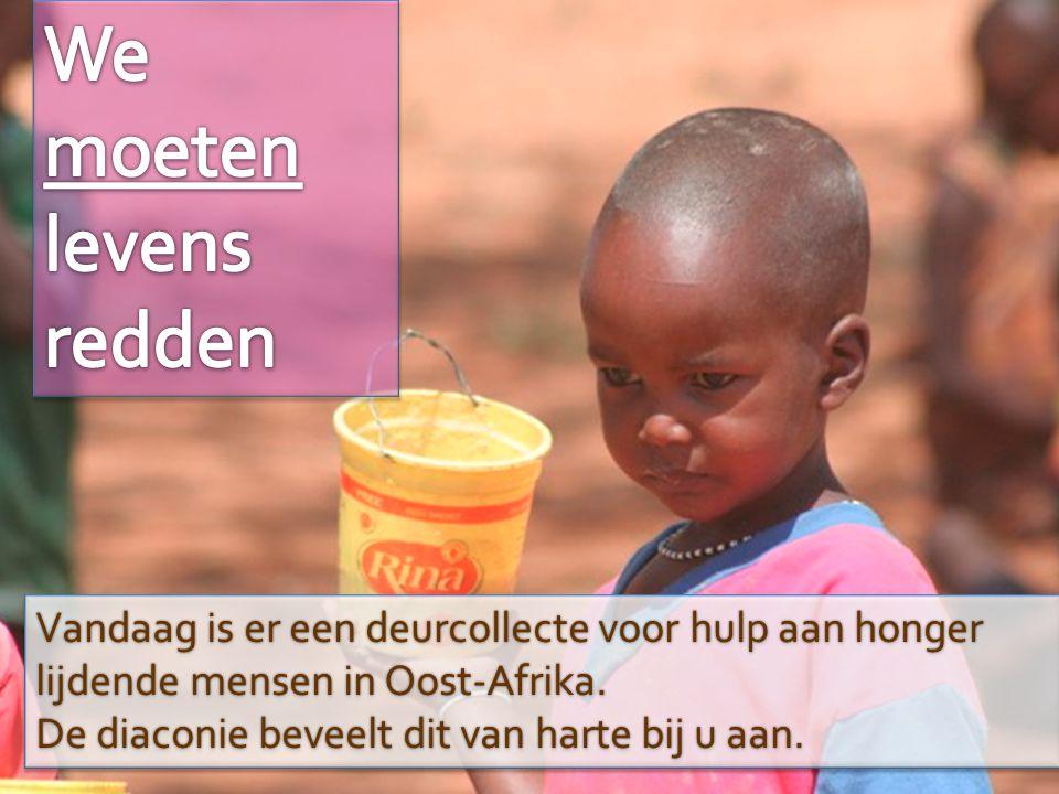 Vandaag is er een deurcollecte voor hulp aan honger lijdende mensen in Oost-Afrika. De diaconie beveelt dit van harte bij u aan. Vandaag is er een deu