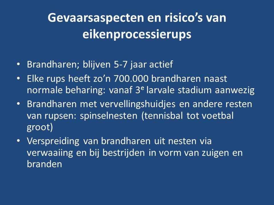 Gevaarsaspecten en risico's van eikenprocessierups Brandharen; blijven 5-7 jaar actief Elke rups heeft zo'n 700.000 brandharen naast normale beharing:
