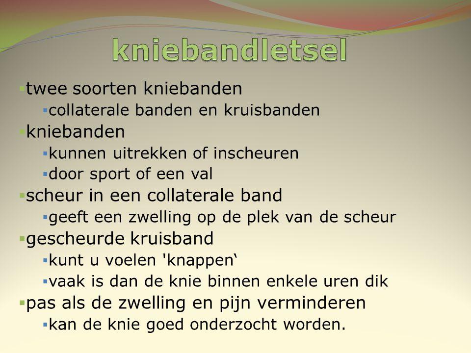  twee soorten kniebanden  collaterale banden en kruisbanden  kniebanden  kunnen uitrekken of inscheuren  door sport of een val  scheur in een co