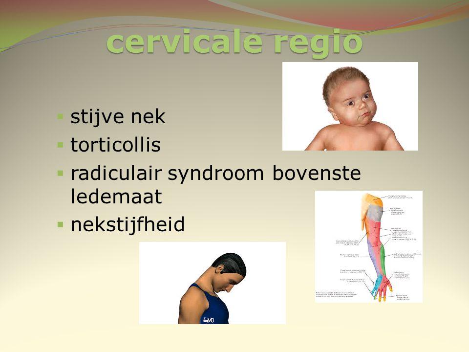 cervicale regio  stijve nek  torticollis  radiculair syndroom bovenste ledemaat  nekstijfheid