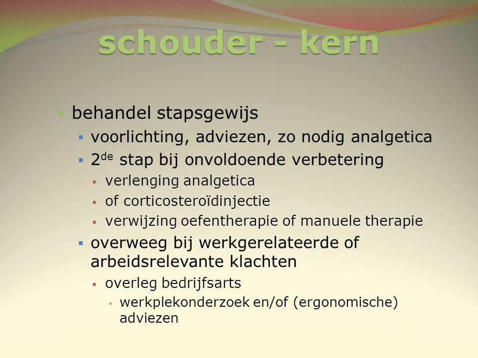 schouder - kern  behandel stapsgewijs  voorlichting, adviezen, zo nodig analgetica  2 de stap bij onvoldoende verbetering  verlenging analgetica 
