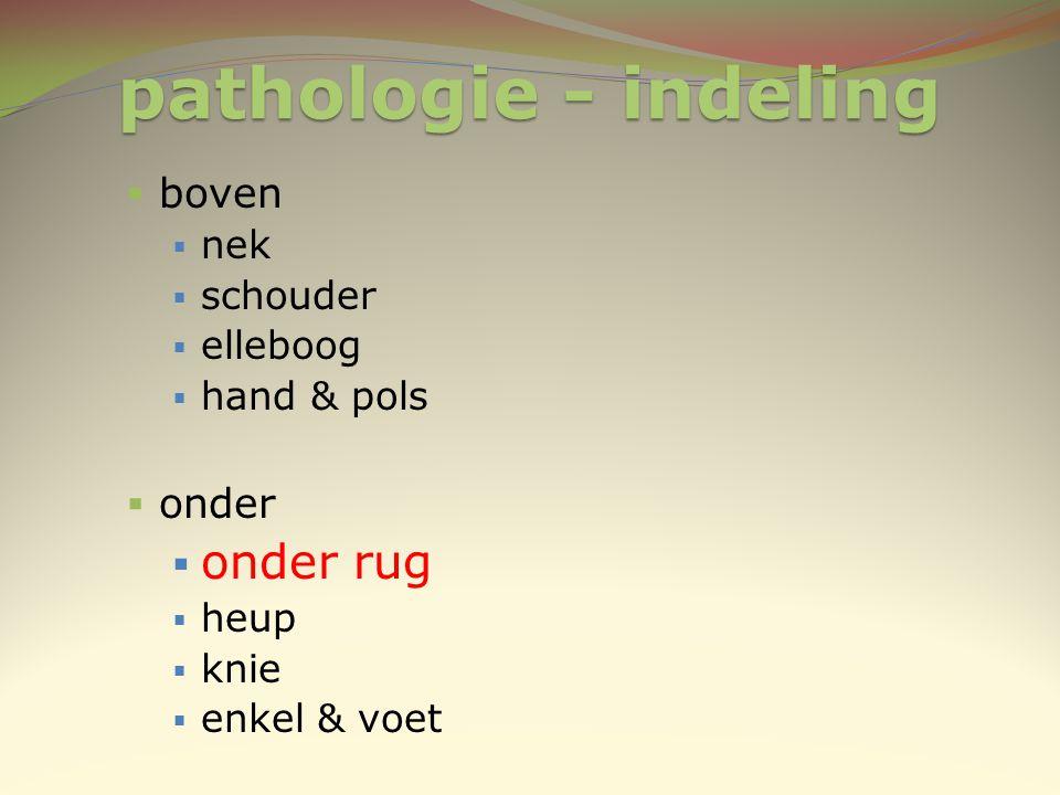 pathologie - indeling  boven  nek  schouder  elleboog  hand & pols  onder  onder rug  heup  knie  enkel & voet
