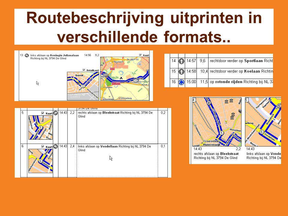 Routebeschrijving uitprinten in verschillende formats..