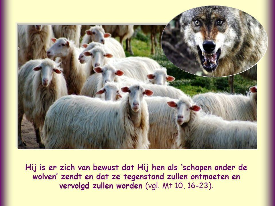 """""""En houd dit voor ogen: ik ben met jullie, alle dagen, tot aan de voltooiing van deze wereld"""", zegt Jezus tot zijn leerlingen, nadat Hij hun de taak h"""