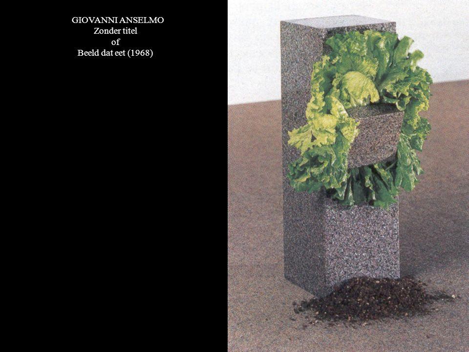 GIOVANNI ANSELMO Zonder titel of Beeld dat eet (1968)