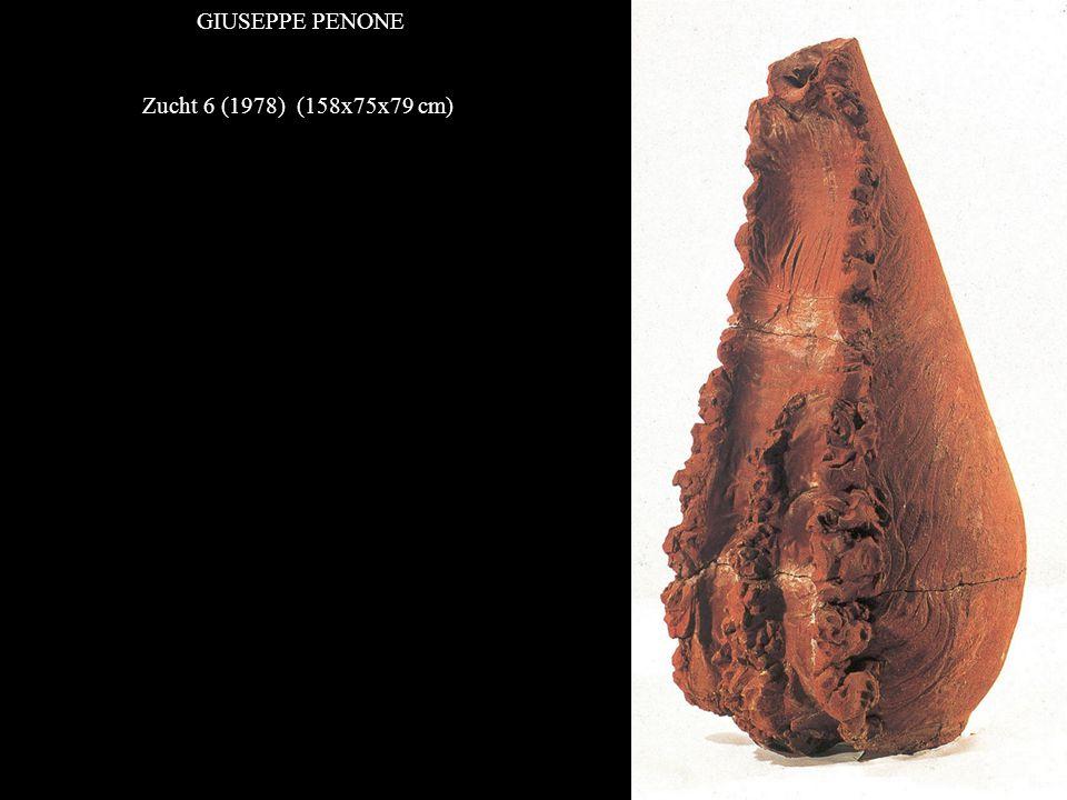 GIUSEPPE PENONE Zucht 6 (1978) (158x75x79 cm)