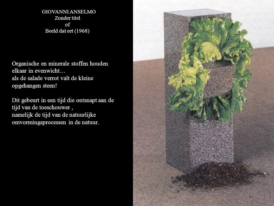GIOVANNI ANSELMO Zonder titel of Beeld dat eet (1968) Organische en minerale stoffen houden elkaar in evenwicht… als de salade verrot valt de kleine opgehangen steen.