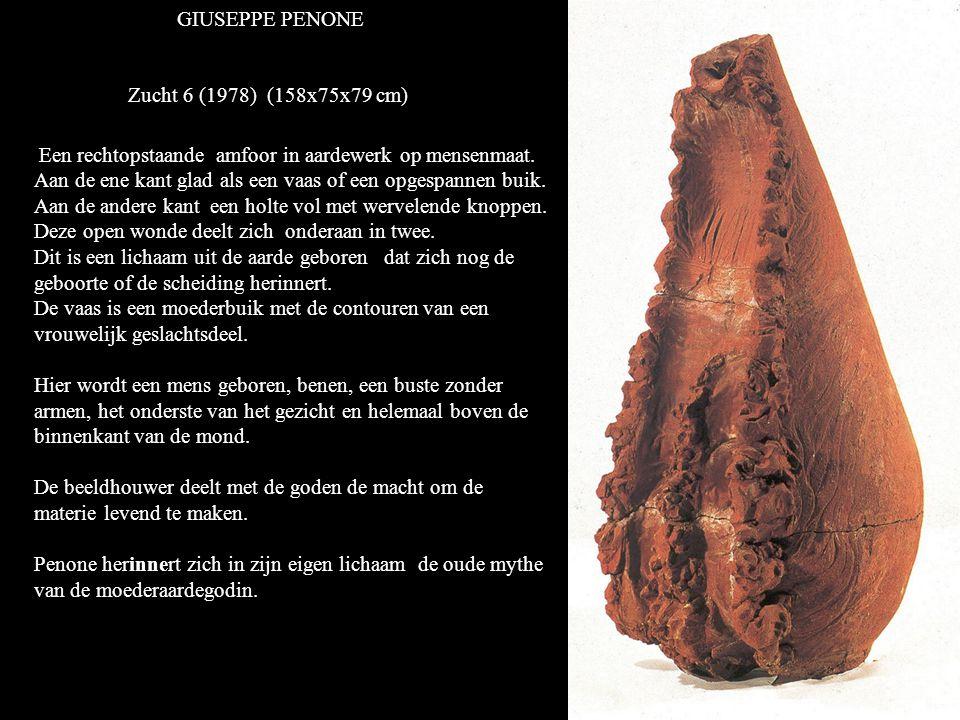 GIUSEPPE PENONE Zucht 6 (1978) (158x75x79 cm) Een rechtopstaande amfoor in aardewerk op mensenmaat.