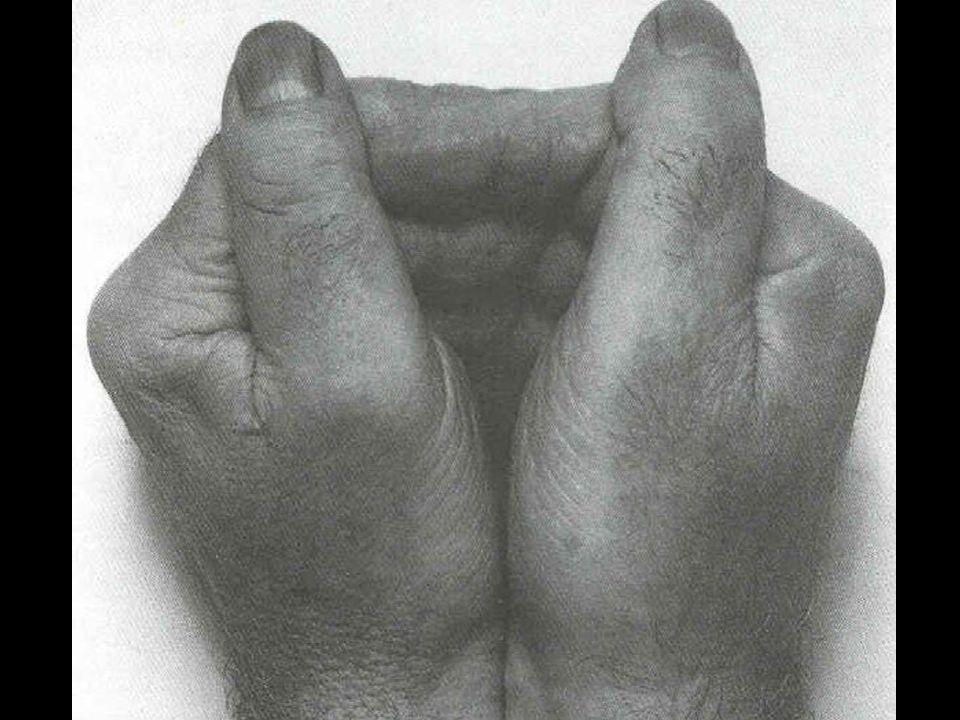 JOSEPH BEUYS Stoel van vet (1964)