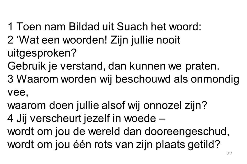 22 1 Toen nam Bildad uit Suach het woord: 2 'Wat een woorden.