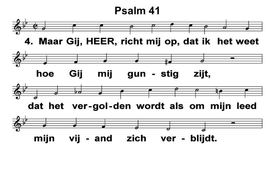 Psalm 41