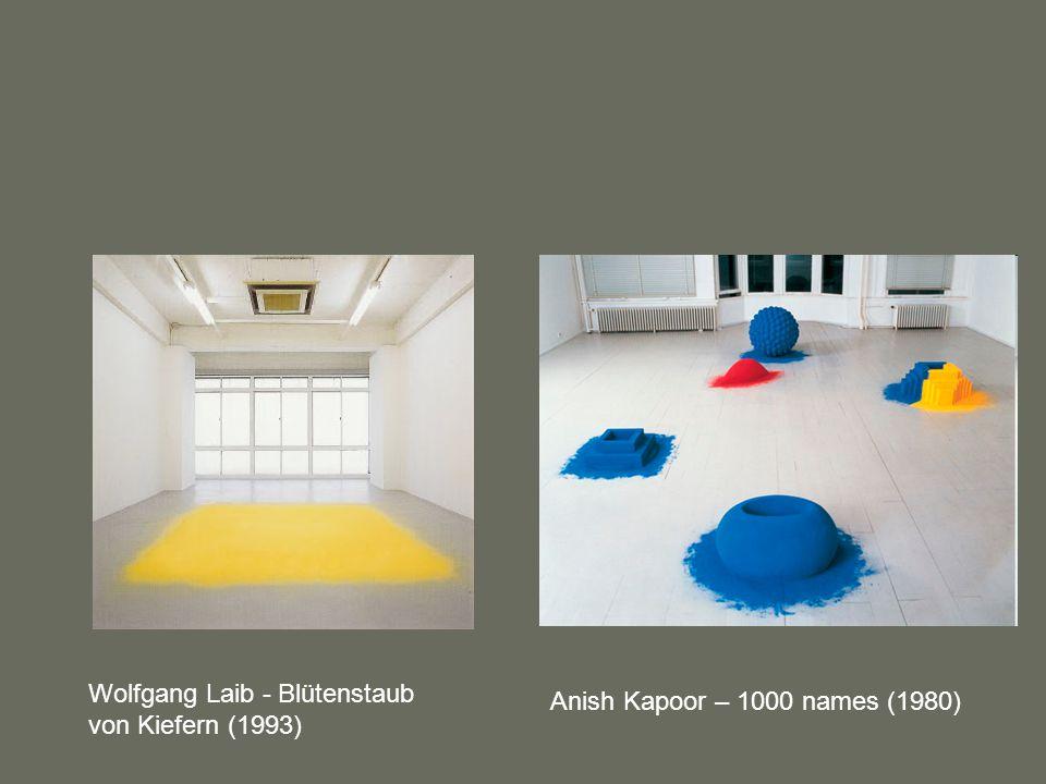 Wolfgang Laib - Blütenstaub von Kiefern (1993) Anish Kapoor – 1000 names (1980)
