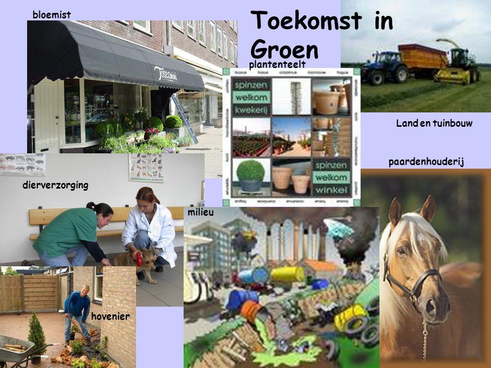Toekomst in Groen bloemist Land en tuinbouw paardenhouderij milieu hovenier dierverzorging plantenteelt
