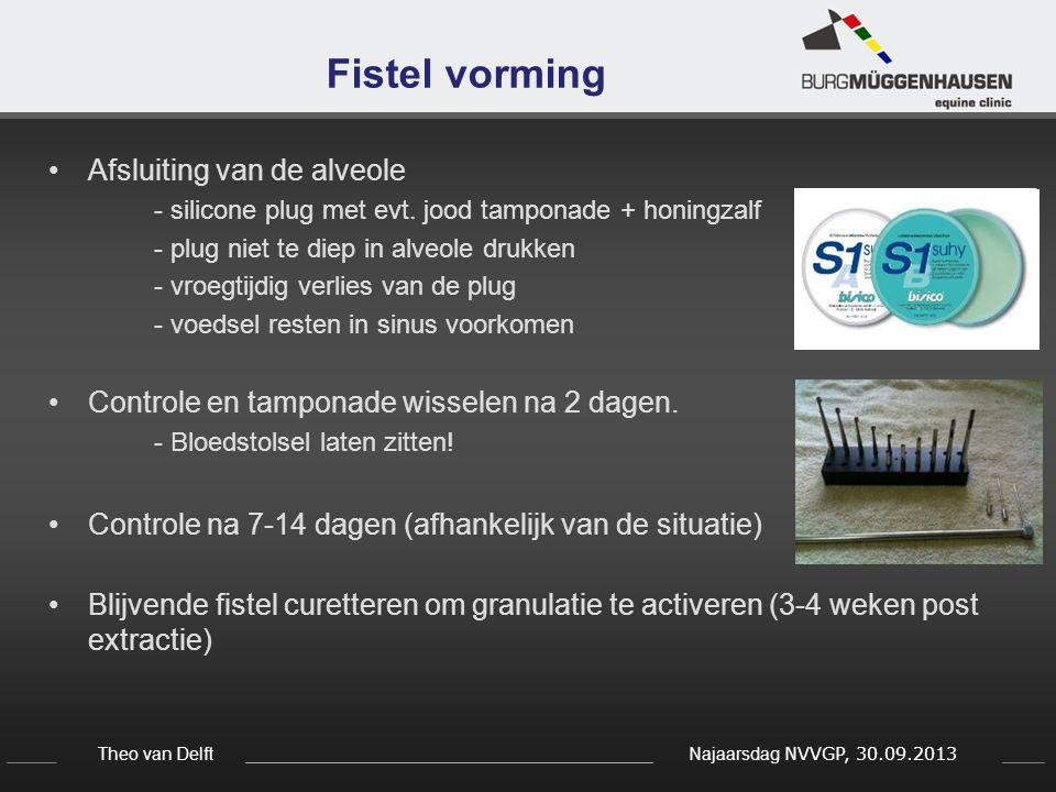 Theo van Delft Najaarsdag NVVGP, 30.09.2013 Fistel vorming Afsluiting van de alveole - silicone plug met evt. jood tamponade + honingzalf - plug niet