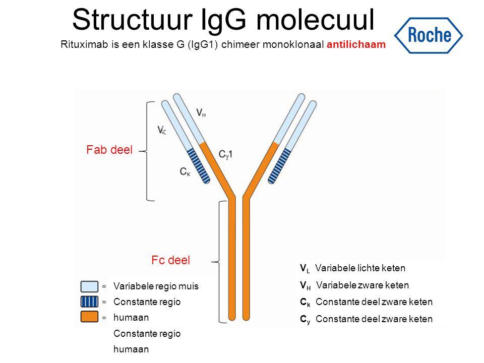 Structuur IgG molecuul Rituximab is een klasse G (IgG1) chimeer monoklonaal antilichaam Variabele regio muis Constante regio humaan V L Variabele lich