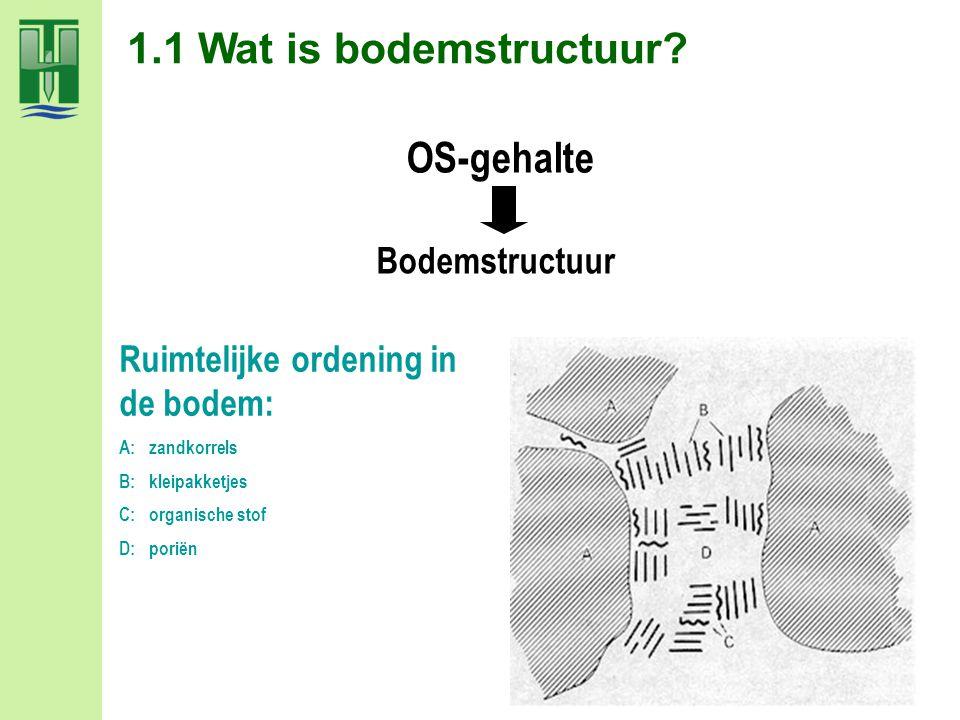 OS-gehalte Ruimtelijke ordening in de bodem: A: zandkorrels B: kleipakketjes C: organische stof D: poriën Bodemstructuur 1.1 Wat is bodemstructuur?