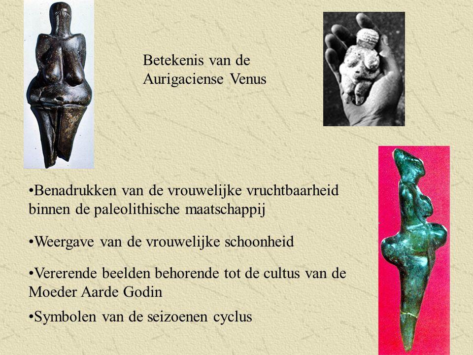 Betekenis van de Aurigaciense Venus Benadrukken van de vrouwelijke vruchtbaarheid binnen de paleolithische maatschappij Weergave van de vrouwelijke sc