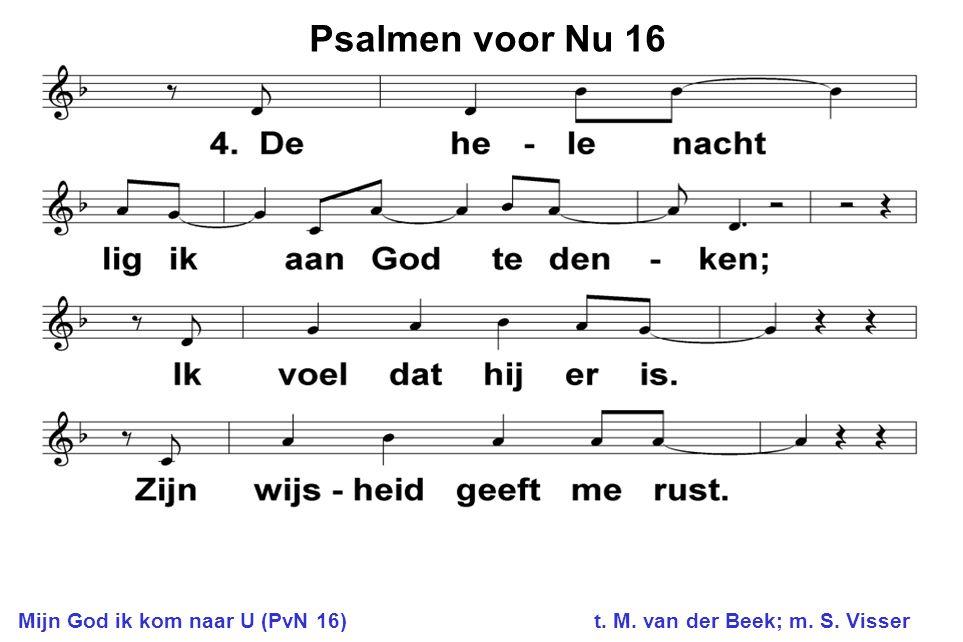 Psalmen voor Nu 16