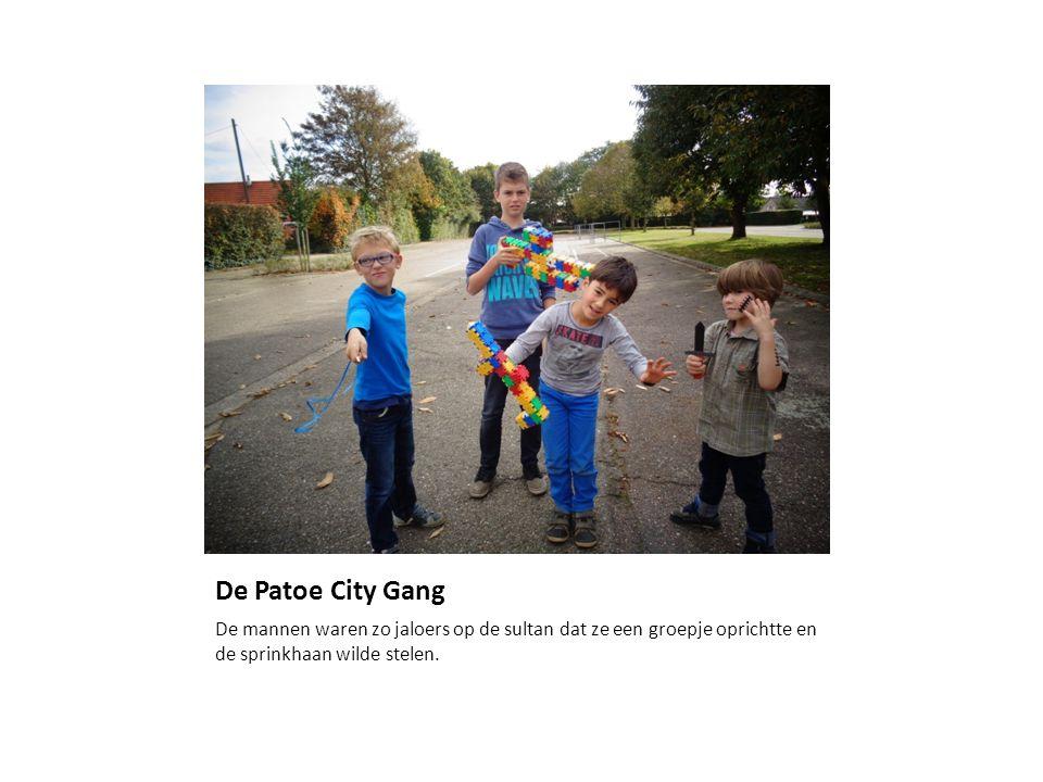 De Patoe City Gang De mannen waren zo jaloers op de sultan dat ze een groepje oprichtte en de sprinkhaan wilde stelen.