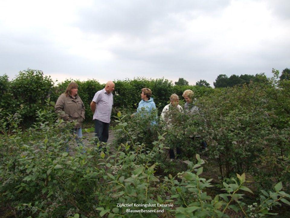 12-6-201221 ZijActief Koningslust Excursie BlauweBessenLand