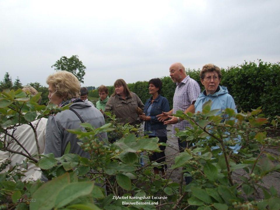 12-6-201223 ZijActief Koningslust Excursie BlauweBessenLand