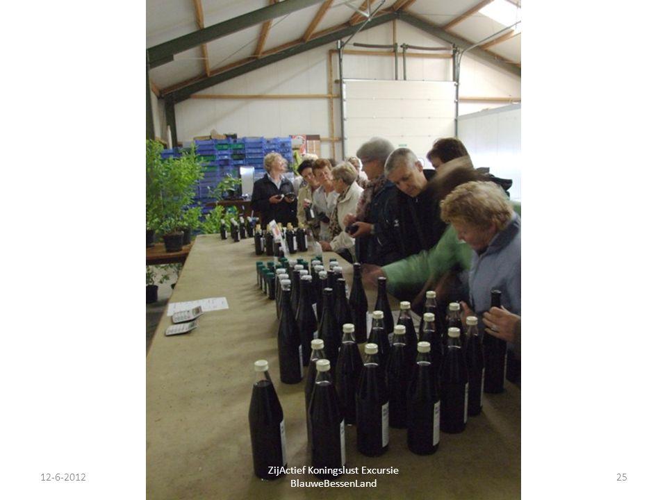 12-6-201225 ZijActief Koningslust Excursie BlauweBessenLand