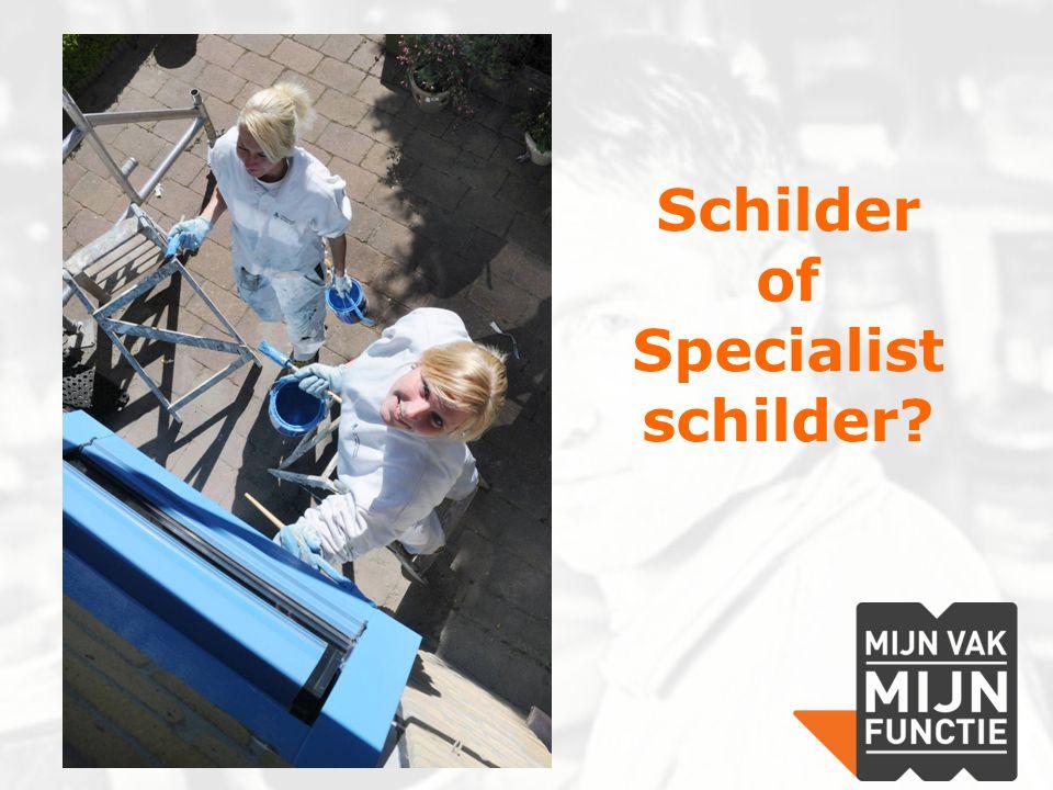 Schilder of Specialist schilder?