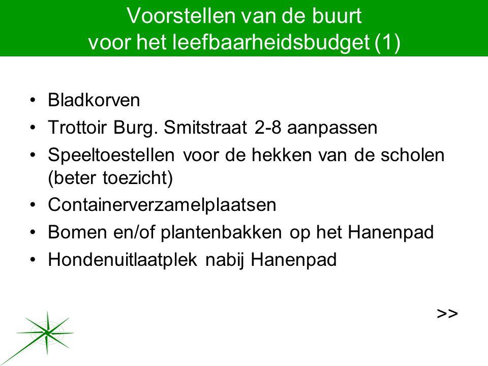 Voorstellen van de buurt voor het leefbaarheidsbudget (1) Bladkorven Trottoir Burg.