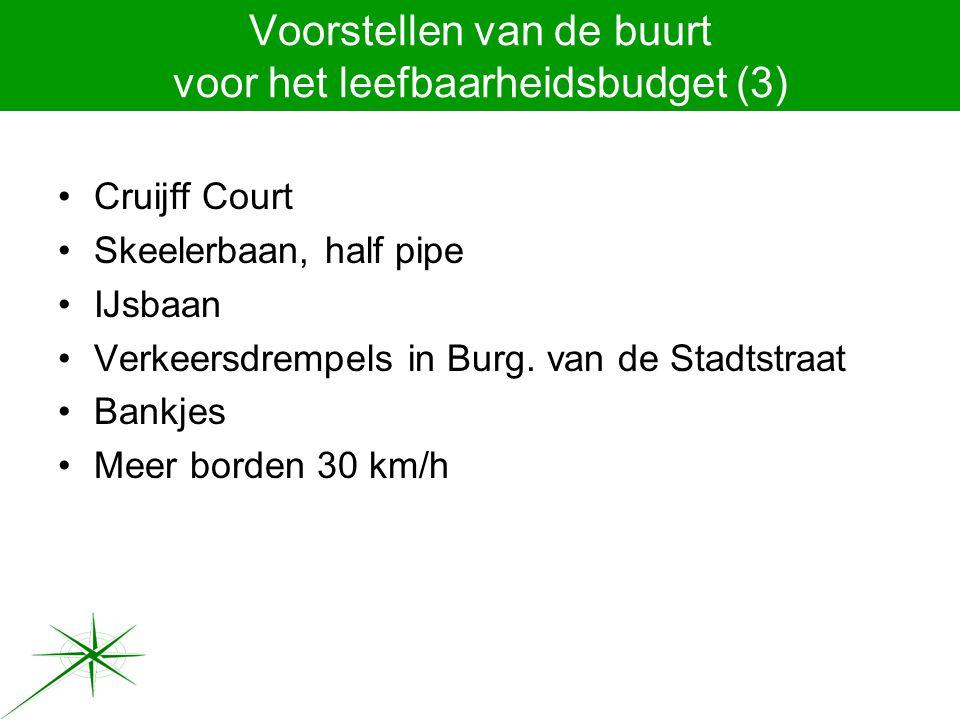 Voorstellen van de buurt voor het leefbaarheidsbudget (3) Cruijff Court Skeelerbaan, half pipe IJsbaan Verkeersdrempels in Burg.