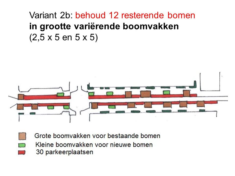 Variant 2b: behoud 12 resterende bomen in grootte variërende boomvakken (2,5 x 5 en 5 x 5)