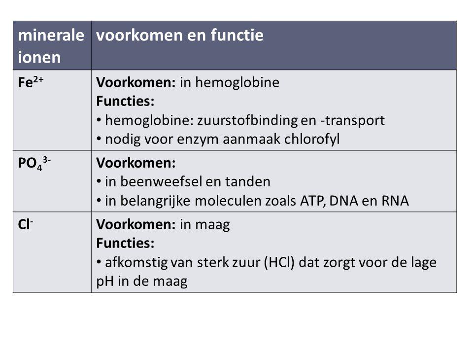 minerale ionen voorkomen en functie Fe 2+ Voorkomen: in hemoglobine Functies: hemoglobine: zuurstofbinding en -transport nodig voor enzym aanmaak chlorofyl PO 4 3- Voorkomen: in beenweefsel en tanden in belangrijke moleculen zoals ATP, DNA en RNA Cl - Voorkomen: in maag Functies: afkomstig van sterk zuur (HCl) dat zorgt voor de lage pH in de maag