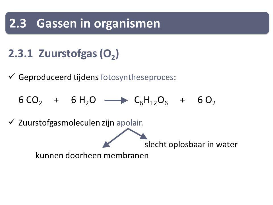 2.3Gassen in organismen 2.3.1 Zuurstofgas (O 2 ) Geproduceerd tijdens fotosyntheseproces: 6 CO 2 + 6 H 2 O C 6 H 12 O 6 + 6 O 2 Zuurstofgasmoleculen zijn apolair.