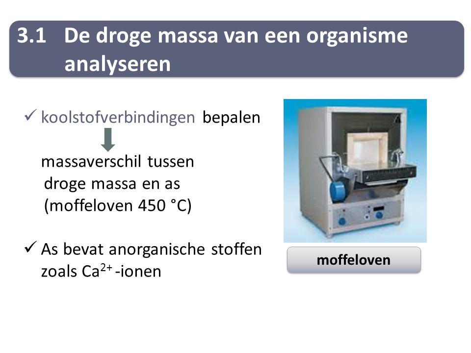 3.1De droge massa van een organisme analyseren 3.1De droge massa van een organisme analyseren koolstofverbindingen bepalen massaverschil tussen droge massa en as (moffeloven 450 °C) As bevat anorganische stoffen zoals Ca 2+ -ionen moffeloven