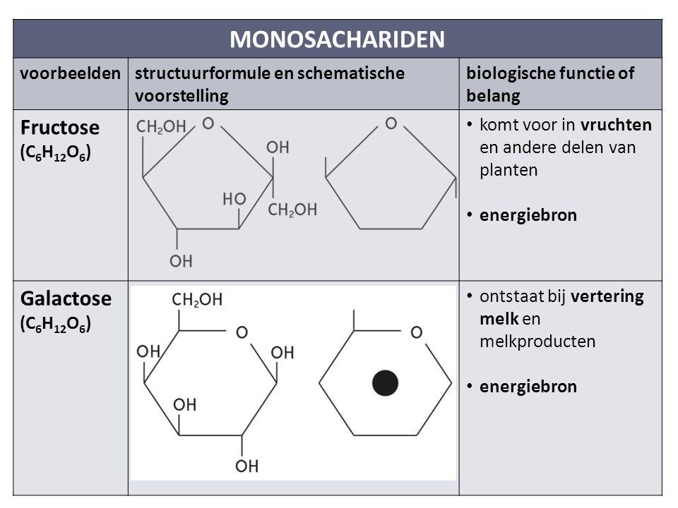 MONOSACHARIDEN voorbeeldenstructuurformule en schematische voorstelling biologische functie of belang Fructose (C 6 H 12 O 6 ) komt voor in vruchten en andere delen van planten energiebron Galactose (C 6 H 12 O 6 ) ontstaat bij vertering melk en melkproducten energiebron