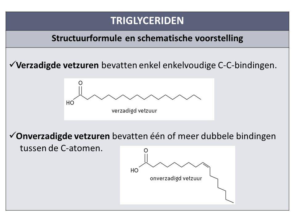 TRIGLYCERIDEN Structuurformule en schematische voorstelling Verzadigde vetzuren bevatten enkel enkelvoudige C-C-bindingen.
