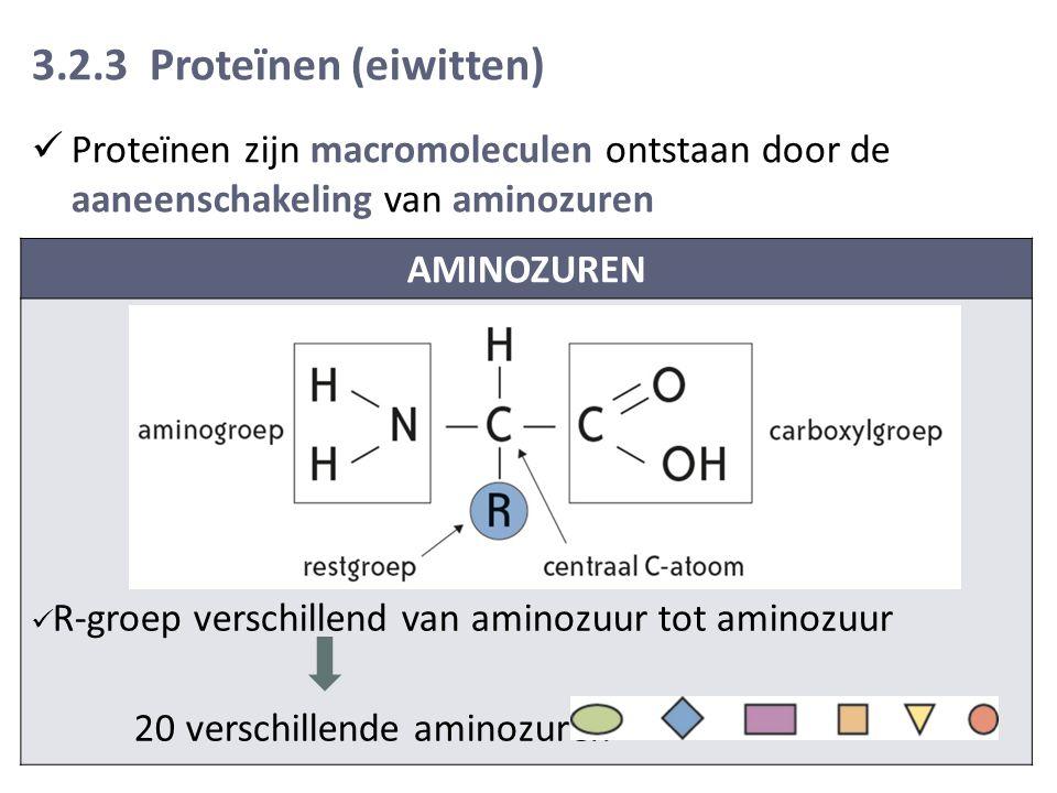 3.2.3 Proteïnen (eiwitten) Proteïnen zijn macromoleculen ontstaan door de aaneenschakeling van aminozuren AMINOZUREN R-groep verschillend van aminozuur tot aminozuur 20 verschillende aminozuren