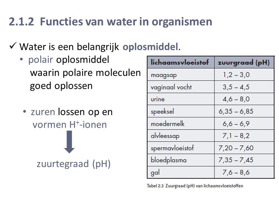 2.1.2 Functies van water in organismen Water is een belangrijk oplosmiddel.