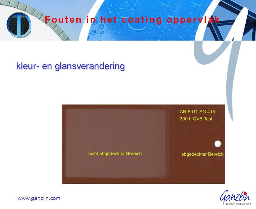 kleur- en glansverandering www.ganzlin.com Fouten in het coating oppervlak