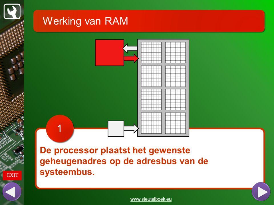 Werking van RAM www.sleutelboek.eu De processor plaatst het gewenste geheugenadres op de adresbus van de systeembus. 1 1