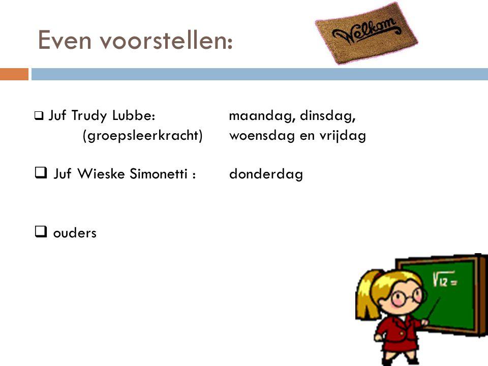 Wereldoriëntatie groep 3  Geschiedenis (Bij de tijd)  Aardrijkskunde (De blauwe planeet)  Leefwereld en techniek (Ontdekkasteel)  Verkeer (Rondje verkeer) 3 verkeersweken: fietsoefeningen, educatieve wandeling door de wijk.