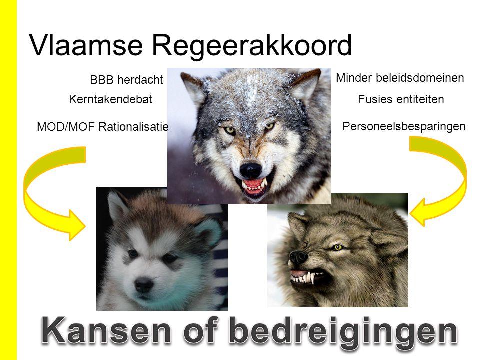 Vlaamse Regeerakkoord Kerntakendebat MOD/MOF Rationalisatie Personeelsbesparingen Fusies entiteiten Minder beleidsdomeinen BBB herdacht