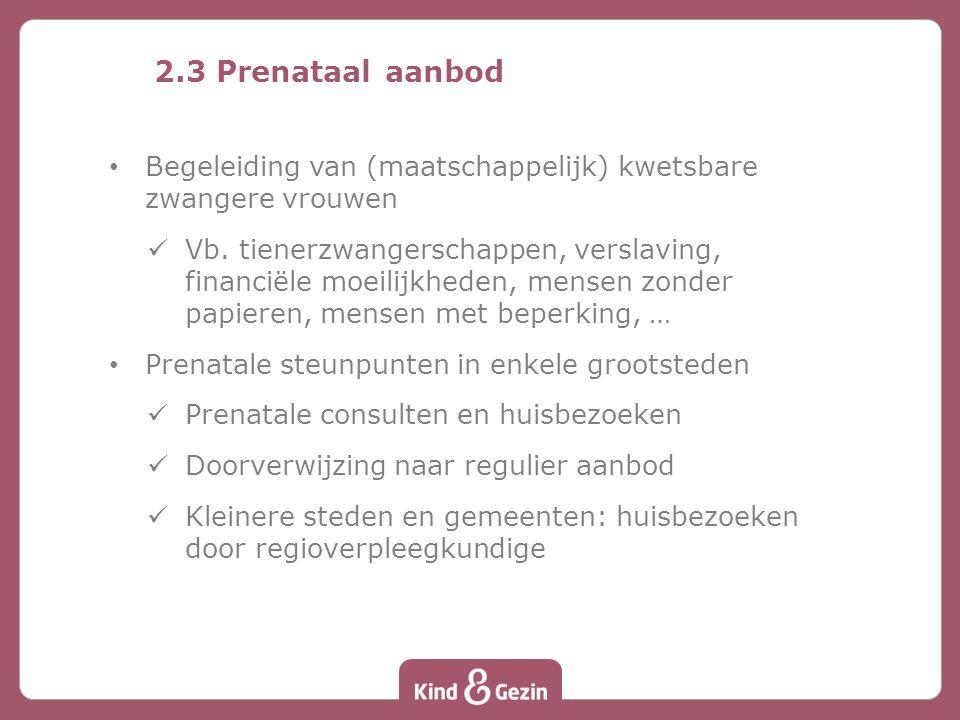 2.3 Prenataal aanbod Begeleiding van (maatschappelijk) kwetsbare zwangere vrouwen Vb.