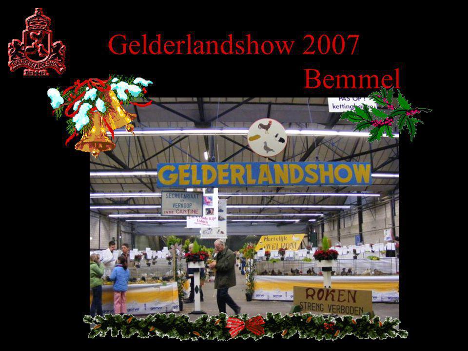 Gelderlandshow 2007 Bemmel