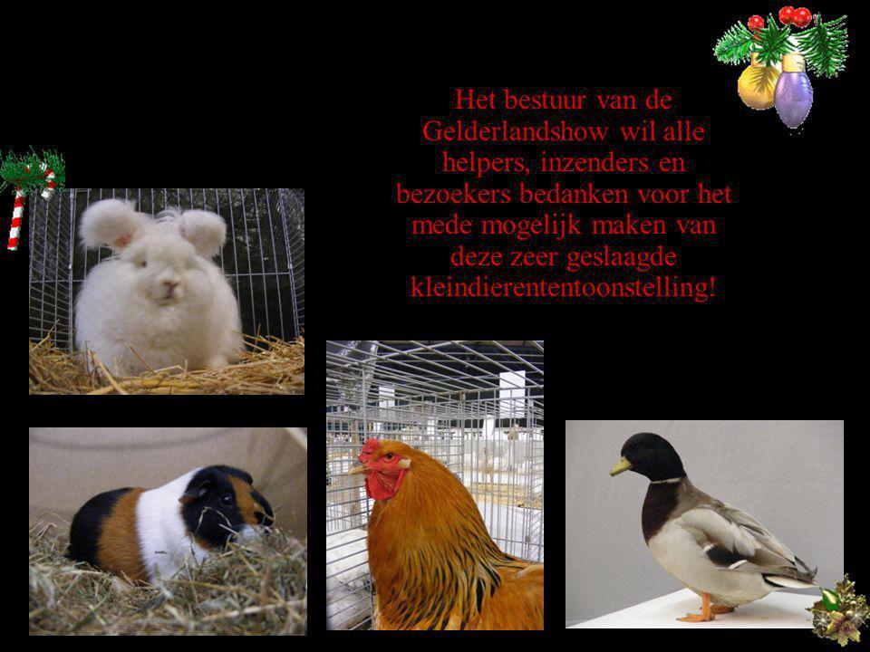 Het bestuur van de Gelderlandshow wil alle helpers, inzenders en bezoekers bedanken voor het mede mogelijk maken van deze zeer geslaagde kleindierententoonstelling!