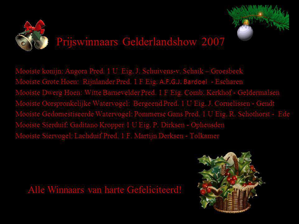 Prijswinnaars Gelderlandshow 2007 Mooiste konijn: Angora Pred.