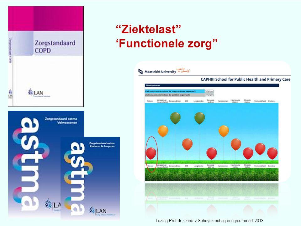 """""""Ziektelast"""" 'Functionele zorg"""" Lezing Prof dr. Onno v Schayck cahag congres maart 2013"""
