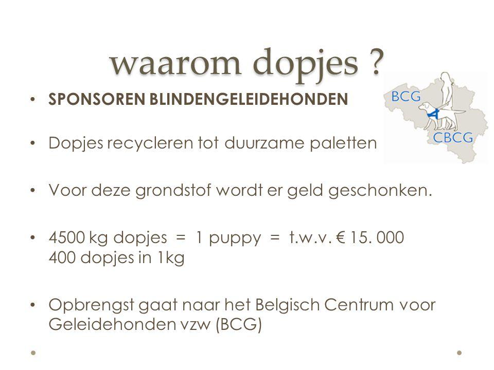 waarom dopjes ? SPONSOREN BLINDEGELEIDEHONDEN LEO doelstelling: dit jaar 2 puppy's sponsoren